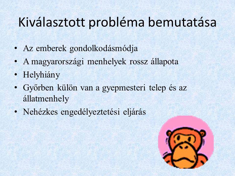 Kiválasztott probléma bemutatása • Az emberek gondolkodásmódja • A magyarországi menhelyek rossz állapota • Helyhiány • Győrben külön van a gyepmesteri telep és az állatmenhely • Nehézkes engedélyeztetési eljárás