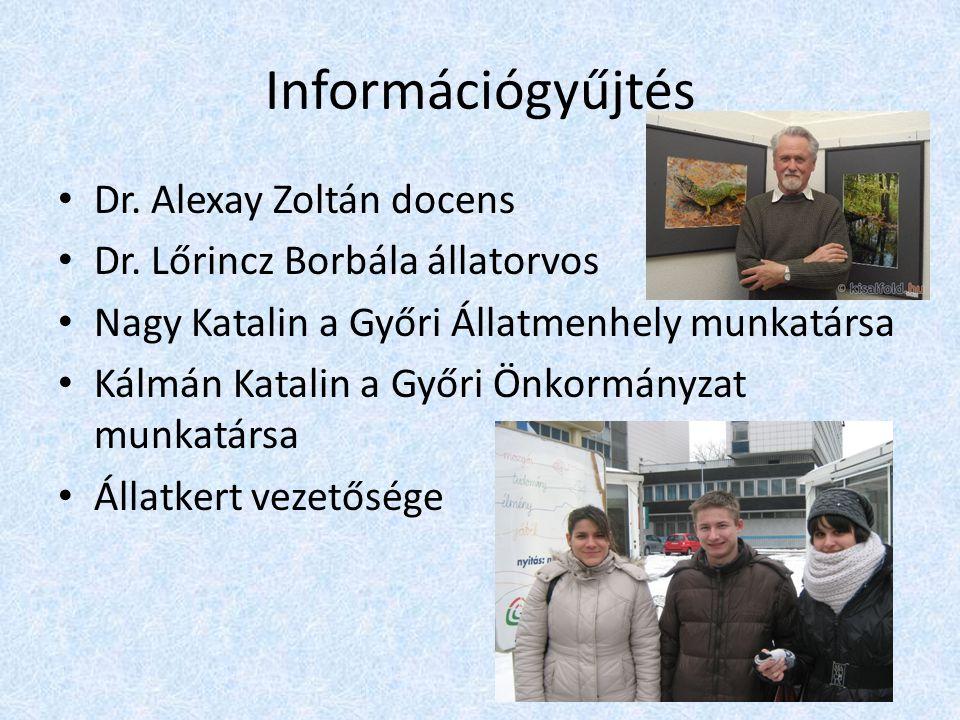 Információgyűjtés • Dr.Alexay Zoltán docens • Dr.