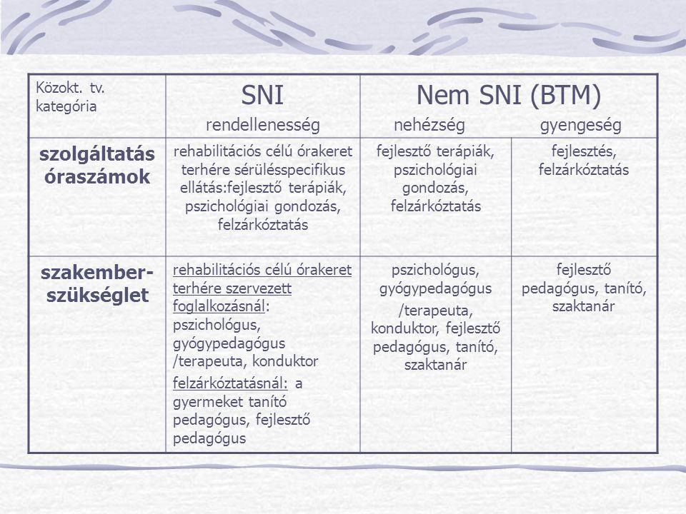 Közokt. tv. kategória SNI rendellenesség Nem SNI (BTM) nehézség gyengeség szolgáltatás óraszámok rehabilitációs célú órakeret terhére sérülésspecifiku