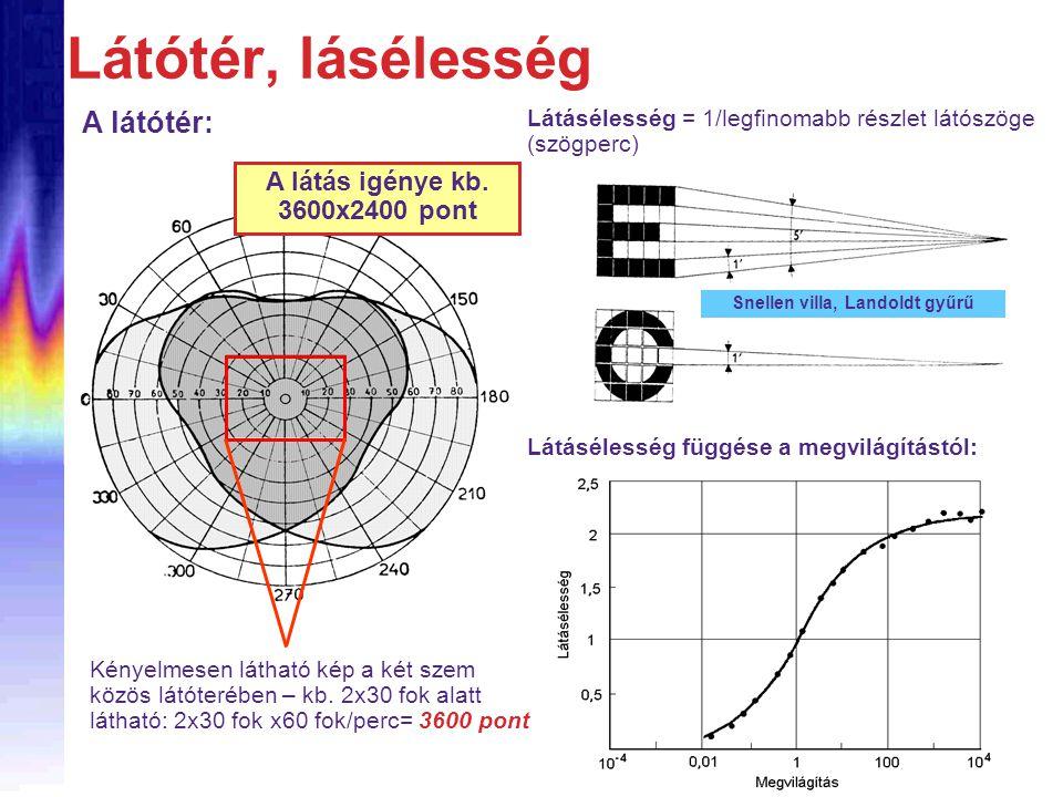 Látótér, lásélesség Látásélesség függése a megvilágítástól: A látótér: Látásélesség = 1/legfinomabb részlet látószöge (szögperc) Snellen villa, Landol