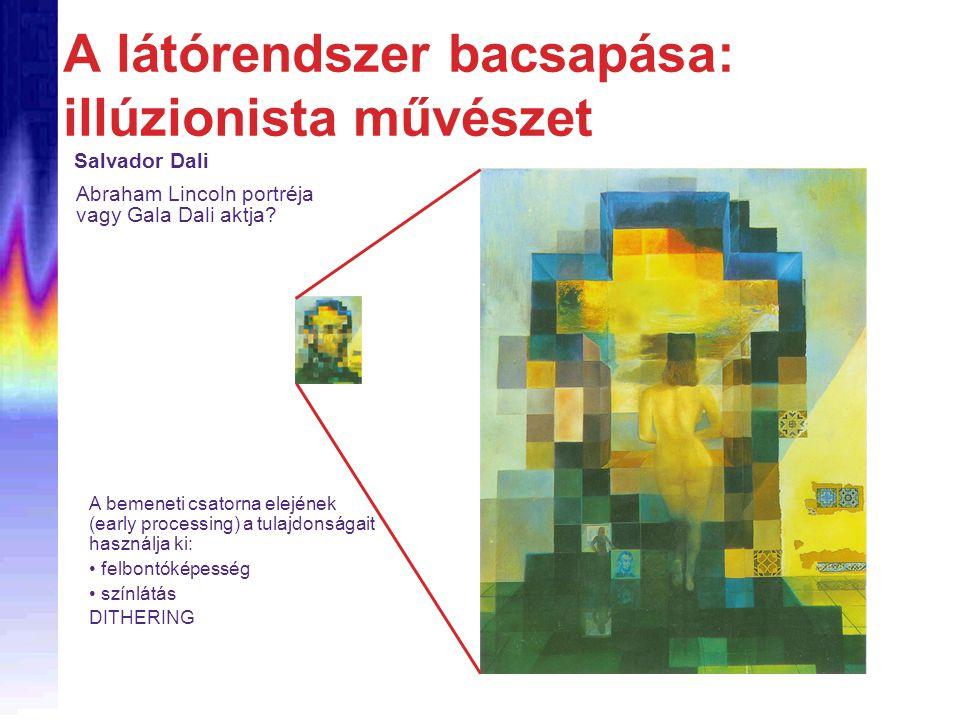 A látórendszer bacsapása: illúzionista művészet Salvador Dali A bemeneti csatorna elejének (early processing) a tulajdonságait használja ki: • felbont