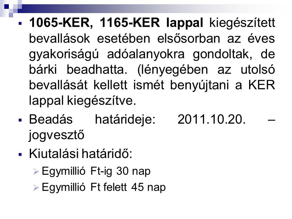  1065-KER, 1165-KER lappal kiegészített bevallások esetében elsősorban az éves gyakoriságú adóalanyokra gondoltak, de bárki beadhatta.