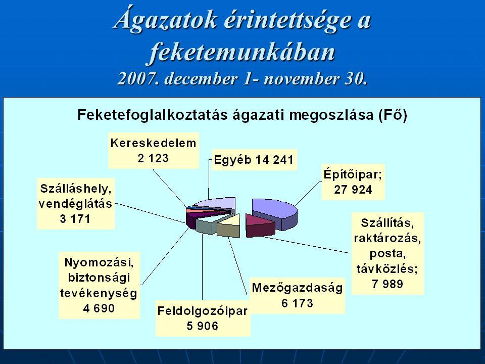 18 Ágazatok érintettsége a feketemunkában 2007. december 1- november 30.