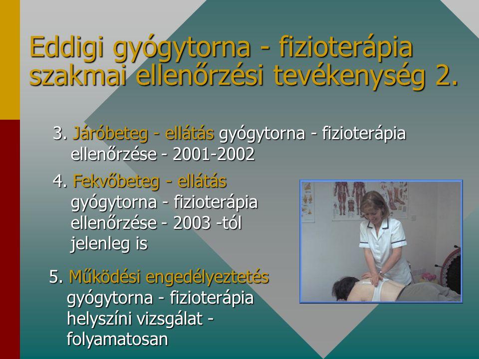 Eddigi gyógytorna - fizioterápia szakmai ellenőrzési tevékenység 1. 1. Otthoni szakápolás gyógytornászi tevékenység ellenőrzése • 1999-2000 •31 szolgá