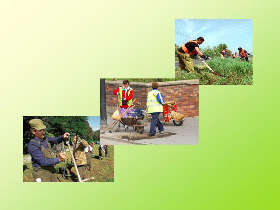 Közcélú munka Az aktív korú nem foglalkoztatottak részére a települési önkormányzat rendszeres szociális segélyt folyósíthat.
