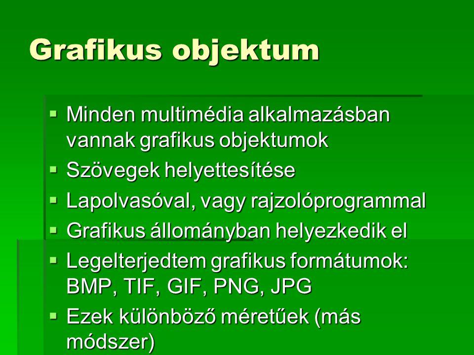 Grafikus objektum  Minden multimédia alkalmazásban vannak grafikus objektumok  Szövegek helyettesítése  Lapolvasóval, vagy rajzolóprogrammal  Grafikus állományban helyezkedik el  Legelterjedtem grafikus formátumok: BMP, TIF, GIF, PNG, JPG  Ezek különböző méretűek (más módszer)
