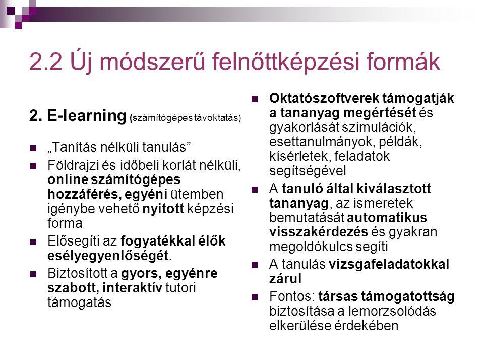 """2.2 Új módszerű felnőttképzési formák 2. E-learning (számítógépes távoktatás)  """"Tanítás nélküli tanulás""""  Földrajzi és időbeli korlát nélküli, onlin"""