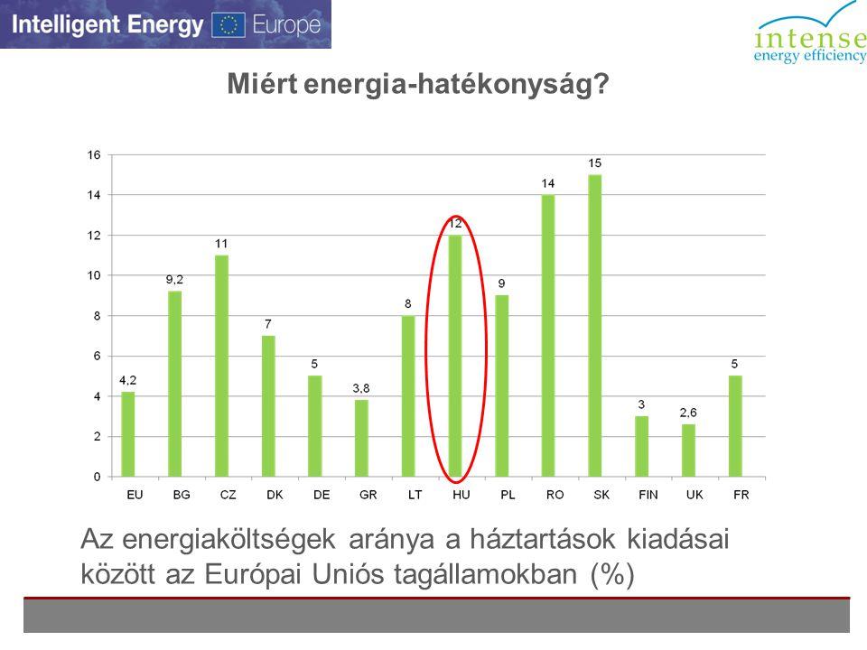 Kérdőíves kutatás, 2009: a fogyasztási szokások felmérése a veszprémi lakosság körében •36 % tartja magát tájékozottnak az energiával kapcsolatos kérdésekben, 44%-uk mérsékelten informált; •Az információk forrása: TV (55%), Nyomtatott sajtó (43%), Internet (35%), Rádió és kiadványok (31%); •A háztartások 51 %-ában tudják a lakók egyénileg szabályozni hőmérsékletet, 21% -ukban egyáltalán semmilyen ráhatásuk nincs a hőmérsékletre; •A legtöbben (54,7%) a 22-24 °C-os szobahőmérsékletet kedvelik, ennek érdekében 2% használ kiegészítő berendezéseket; •A válaszadók 5%-a használ otthon légkondicionálót; •77%-uk igénybe venne szakértői tanácsadás, hogy hatékonyabban tudják kihasználni a meglevő adottságokat; •73%-uk nagyon fontosnak tarja az energiát a hétköznapi élet során; •60%-uk hajtana végre energiahatékonyságot célzó beruházásokat, ha lenne tanácsadás; •A válaszadó szerint az önkormányzatnak vezető szerepet kell vállalnia a segítségnyújtásban.