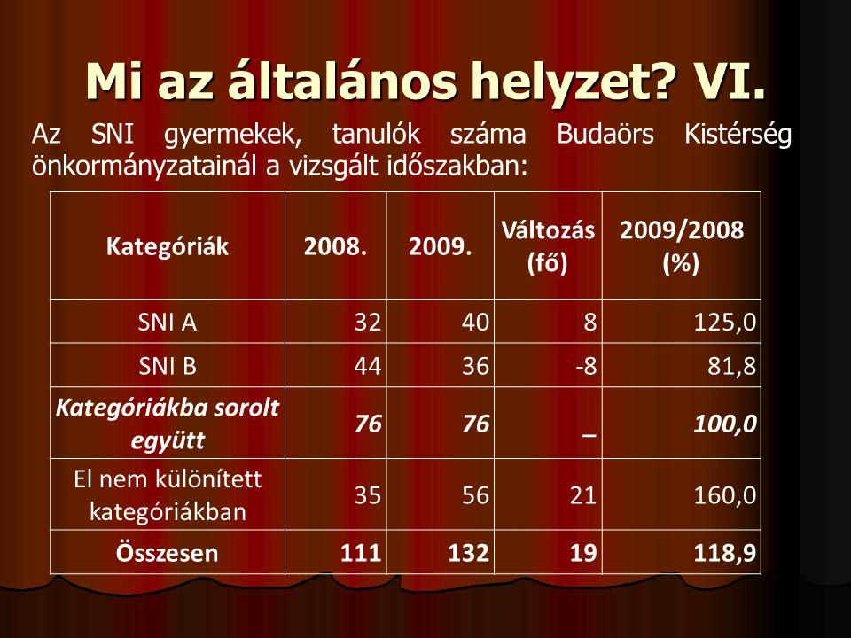 Mi az általános helyzet? VI. Kategóriák2008.2009. Változás (fő) 2009/2008 (%) SNI A32408125,0 SNI B4436-881,8 Kategóriákba sorolt együtt 76 _100,0 El