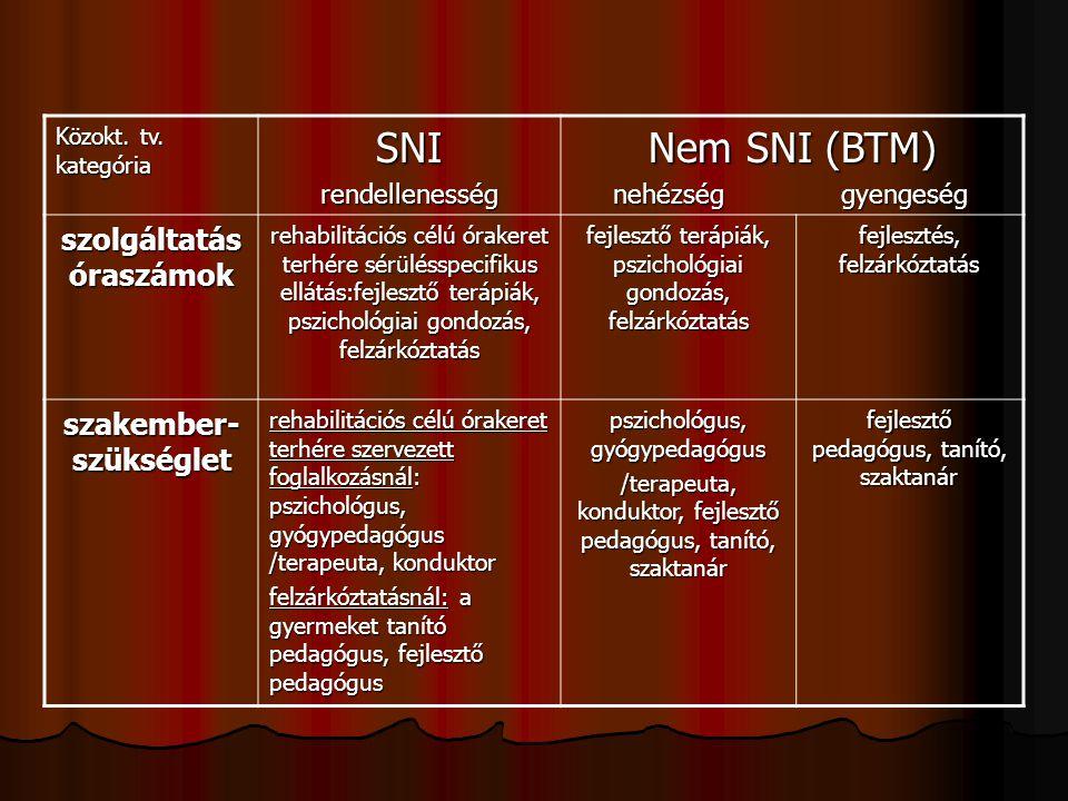 Közokt. tv. kategória SNIrendellenesség Nem SNI (BTM) nehézség gyengeség nehézség gyengeség szolgáltatás óraszámok rehabilitációs célú órakeret terhér