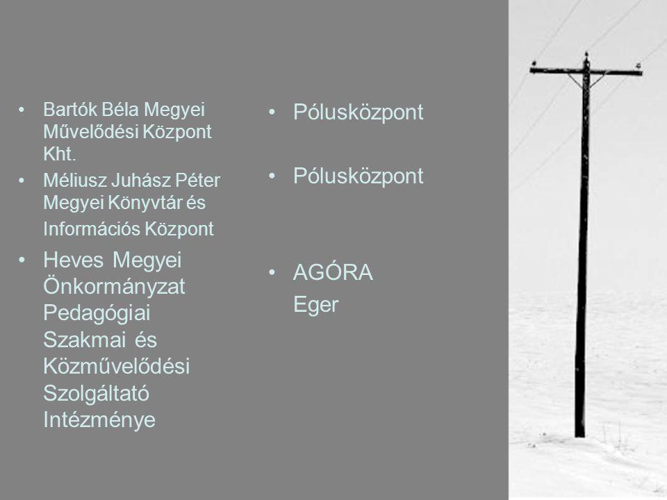•Bartók Béla Megyei Művelődési Központ Kht.