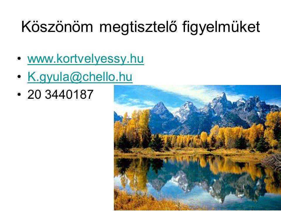 Köszönöm megtisztelő figyelmüket •www.kortvelyessy.huwww.kortvelyessy.hu •K.gyula@chello.huK.gyula@chello.hu •20 3440187