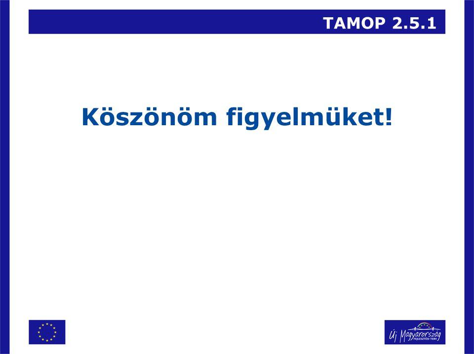 TAMOP 2.5.1 Köszönöm figyelmüket!