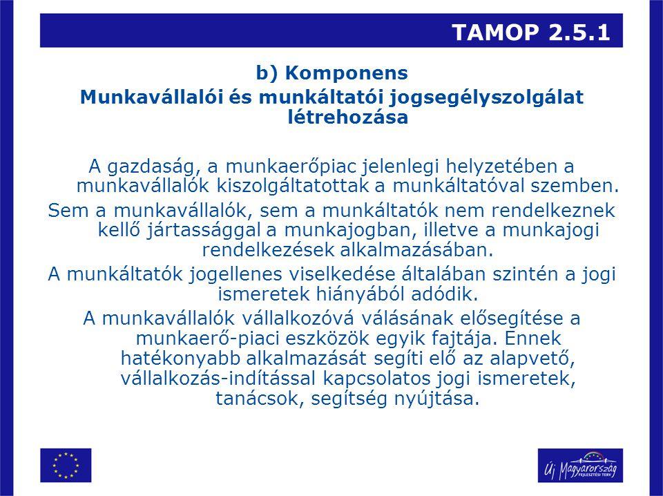 TAMOP 2.5.1 b) Komponens Munkavállalói és munkáltatói jogsegélyszolgálat létrehozása A gazdaság, a munkaerőpiac jelenlegi helyzetében a munkavállalók