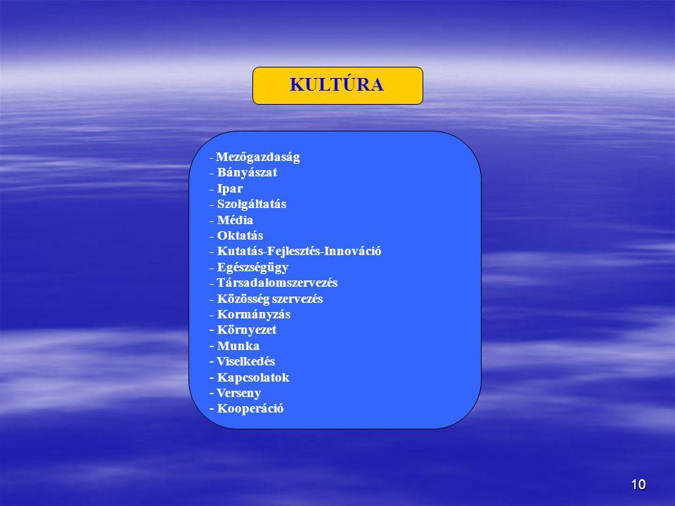 10 KULTÚRA - Mezőgazdaság - Bányászat - Ipar - Szolgáltatás - Média - Oktatás - Kutatás-Fejlesztés-Innováció - Egészségügy - Társadalomszervezés - Közösség szervezés - Kormányzás - Környezet - Munka - Viselkedés - Kapcsolatok - Verseny - Kooperáció