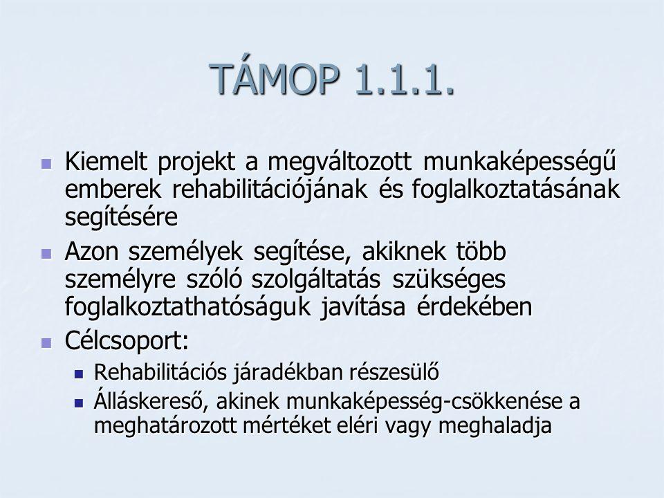 TÁMOP 1.1.1.  Kiemelt projekt a megváltozott munkaképességű emberek rehabilitációjának és foglalkoztatásának segítésére  Azon személyek segítése, ak