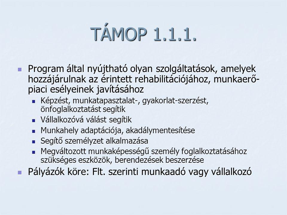 TÁMOP 1.1.1.  Program által nyújtható olyan szolgáltatások, amelyek hozzájárulnak az érintett rehabilitációjához, munkaerő- piaci esélyeinek javításá