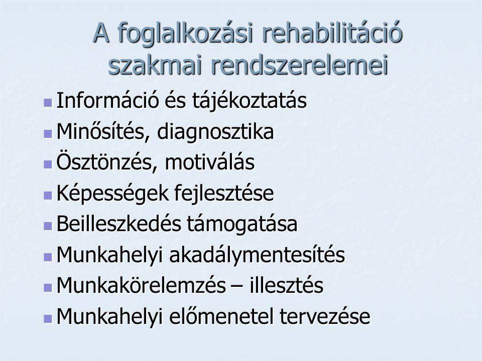 A foglalkozási rehabilitáció szakmai rendszerelemei  Információ és tájékoztatás  Minősítés, diagnosztika  Ösztönzés, motiválás  Képességek fejlesz