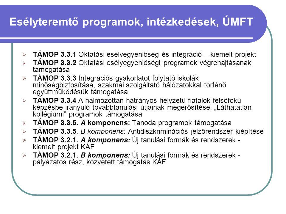  TÁMOP 3.3.1 Oktatási esélyegyenlőség és integráció – kiemelt projekt  TÁMOP 3.3.2 Oktatási esélyegyenlőségi programok végrehajtásának támogatása 