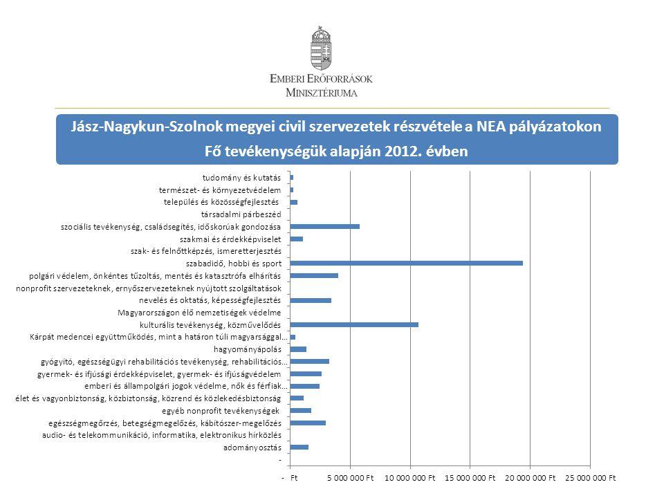 Jász-Nagykun-Szolnok megyei civil szervezetek részvétele a NEA pályázatokon Fő tevékenységük alapján 2012.