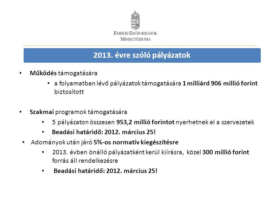 2013. évre szóló pályázatok • Működés támogatására • a folyamatban lévő pályázatok támogatására 1 milliárd 906 millió forint biztosított • Szakmai pro