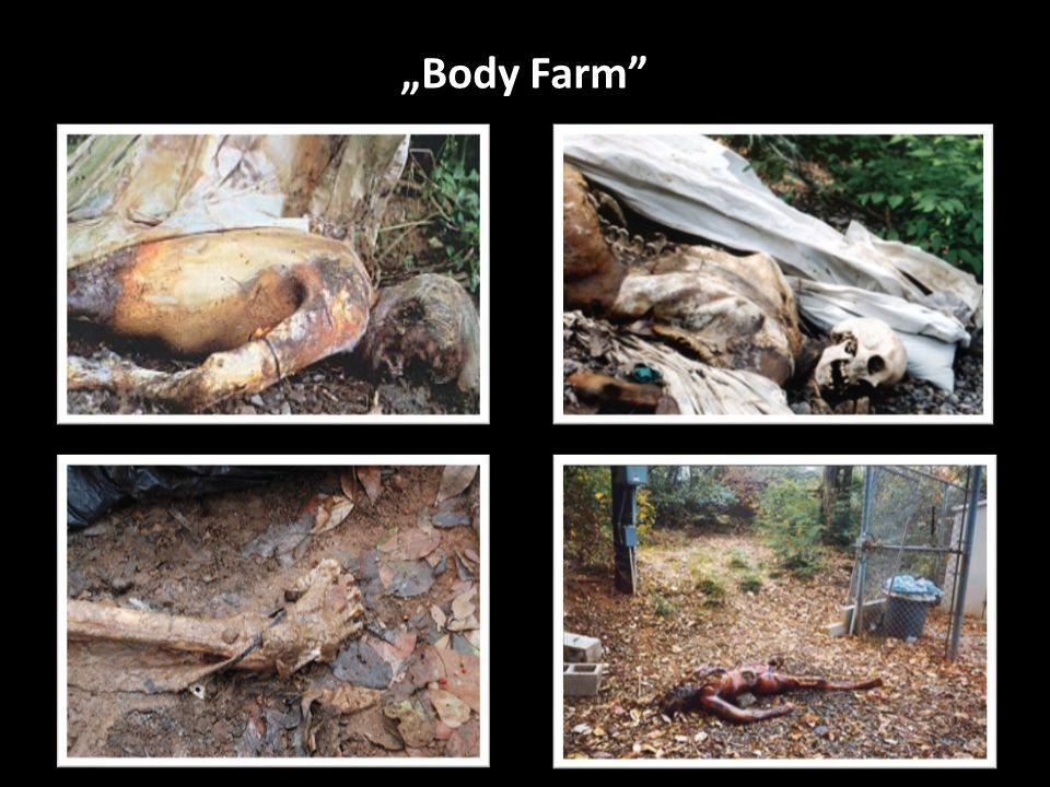 """Body Farm"""