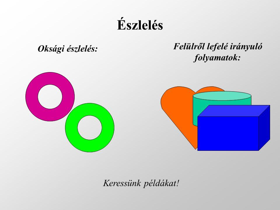 Észlelés Felülről lefelé irányuló folyamatok: Keressünk példákat! Oksági észlelés: