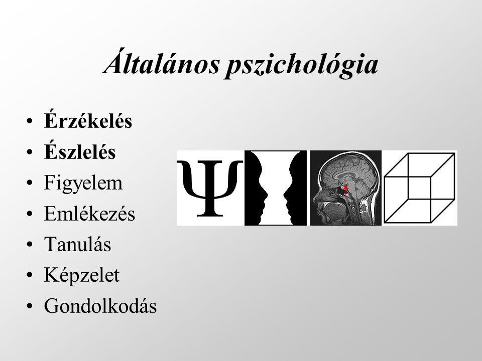 Általános pszichológia •Érzékelés •Észlelés •Figyelem •Emlékezés •Tanulás •Képzelet •Gondolkodás