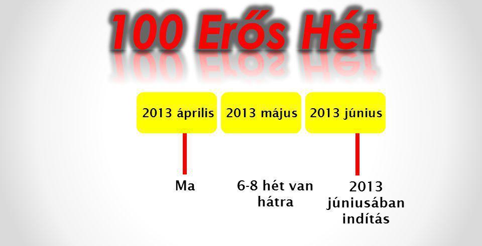 2013 április2013 május2013 június Ma 2013 júniusában indítás 6-8 hét van hátra