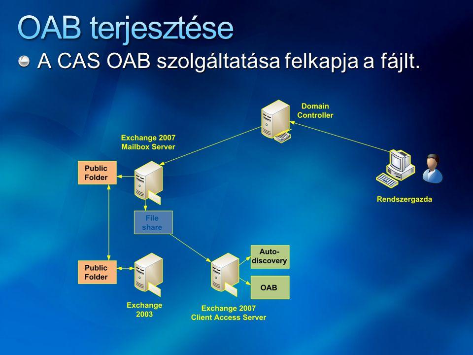 A CAS OAB szolgáltatása felkapja a fájlt.