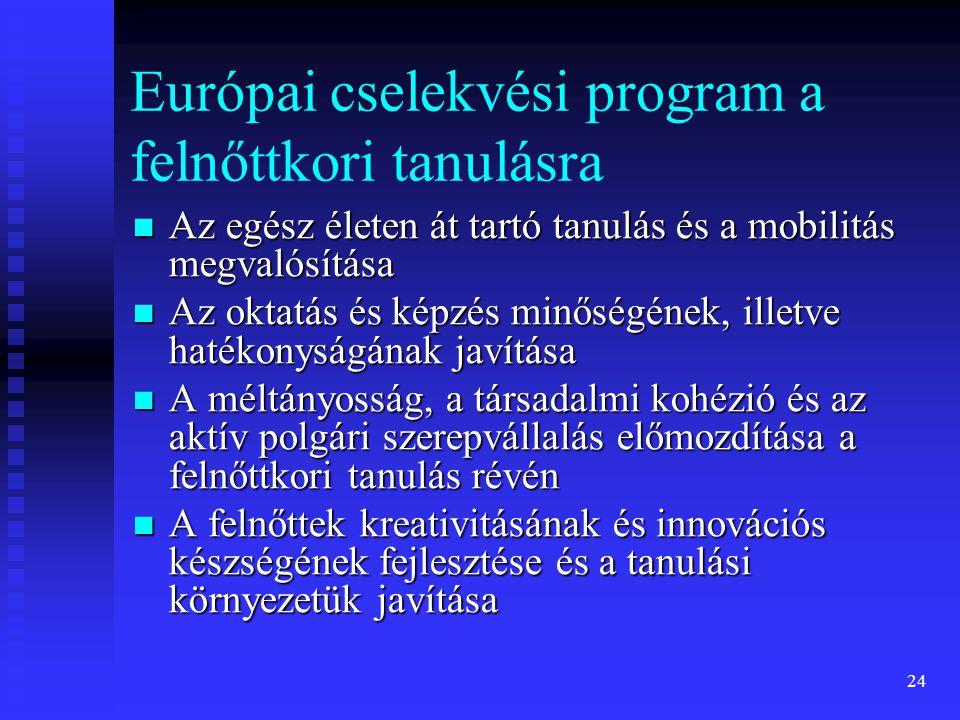 Európai cselekvési program a felnőttkori tanulásra  Az egész életen át tartó tanulás és a mobilitás megvalósítása  Az oktatás és képzés minőségének, illetve hatékonyságának javítása  A méltányosság, a társadalmi kohézió és az aktív polgári szerepvállalás előmozdítása a felnőttkori tanulás révén  A felnőttek kreativitásának és innovációs készségének fejlesztése és a tanulási környezetük javítása 24