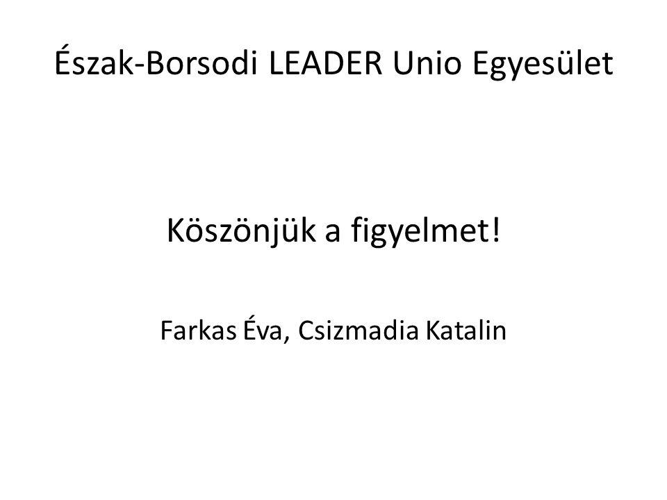 Észak-Borsodi LEADER Unio Egyesület Köszönjük a figyelmet! Farkas Éva, Csizmadia Katalin