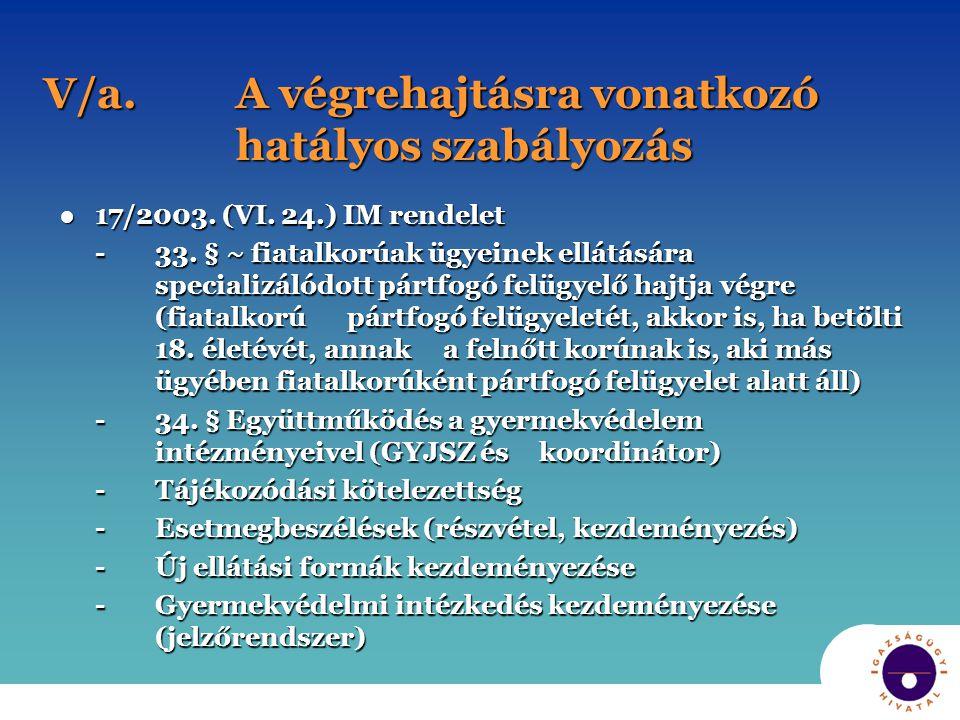 V/a.A végrehajtásra vonatkozó hatályos szabályozás ●17/2003.