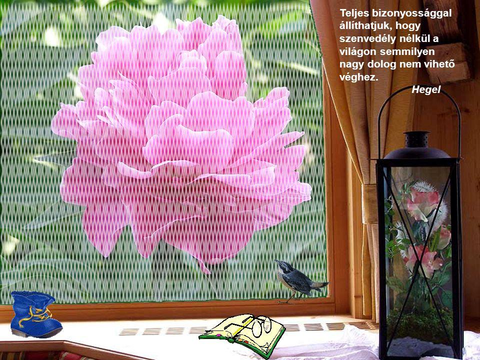 Talán-mivel festő lett belőlem-adósa vagyok a virágoknak. Claude Monet