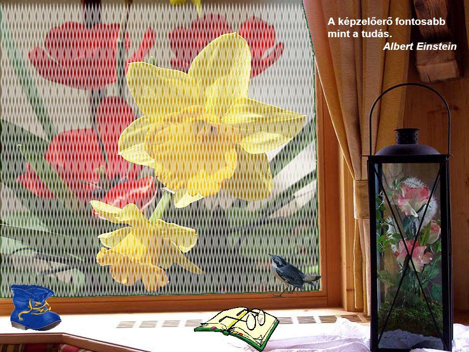 A diaváltás automatikus Virágok és gondolatok