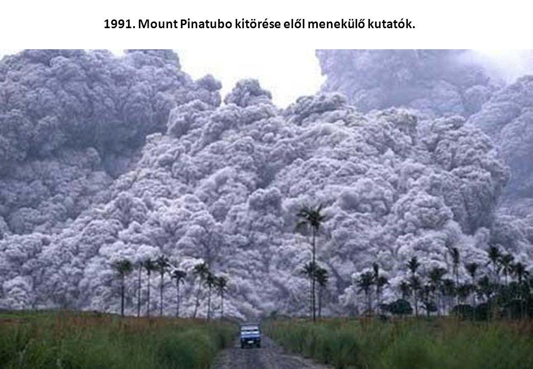 1978. Több mint 900 ember együttes öngyilkosságot követett el Guayanában. A Jim Jones vezette Népek Temploma csoport tagjai ciánnal mérgezett narancsl