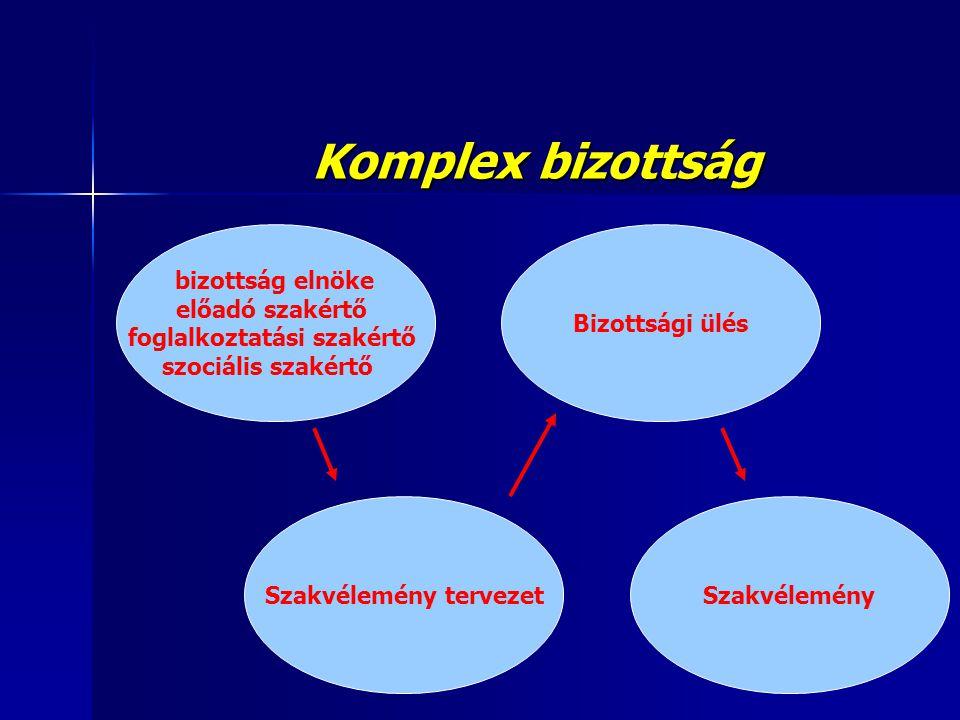 Komplex bizottság bizottság elnöke előadó szakértő foglalkoztatási szakértő szociális szakértő Bizottsági ülés Szakvélemény tervezetSzakvélemény