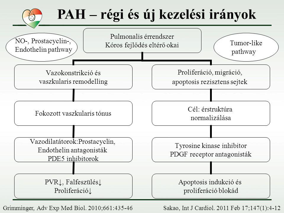 PAH – régi és új kezelési irányok Sakao, Int J Cardiol. 2011 Feb 17;147(1):4-12 Pulmonalis érrendszer Kóros fejlődés eltérő okai Vazokonstrikció és va