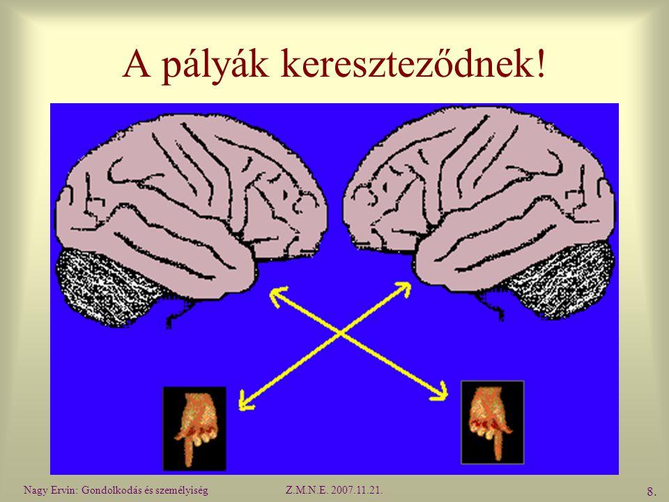 Nagy Ervin: Gondolkodás és személyiségZ.M.N.E. 2007.11.21. 8.8. A pályák kereszteződnek!