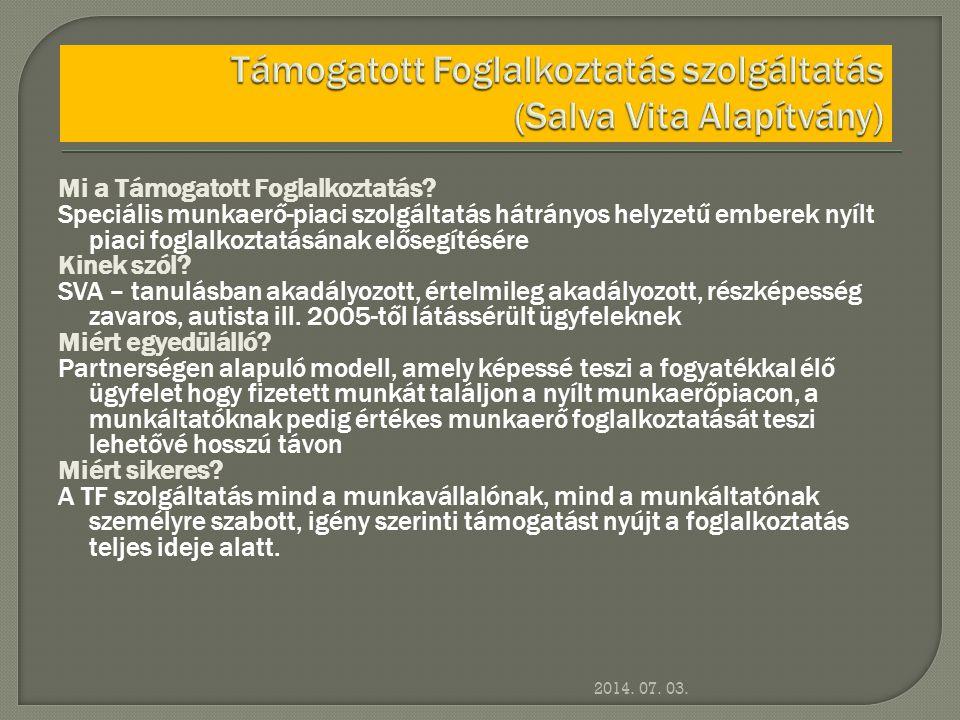 2014. 07. 03. Mi a Támogatott Foglalkoztatás? Speciális munkaerő-piaci szolgáltatás hátrányos helyzetű emberek nyílt piaci foglalkoztatásának elősegít