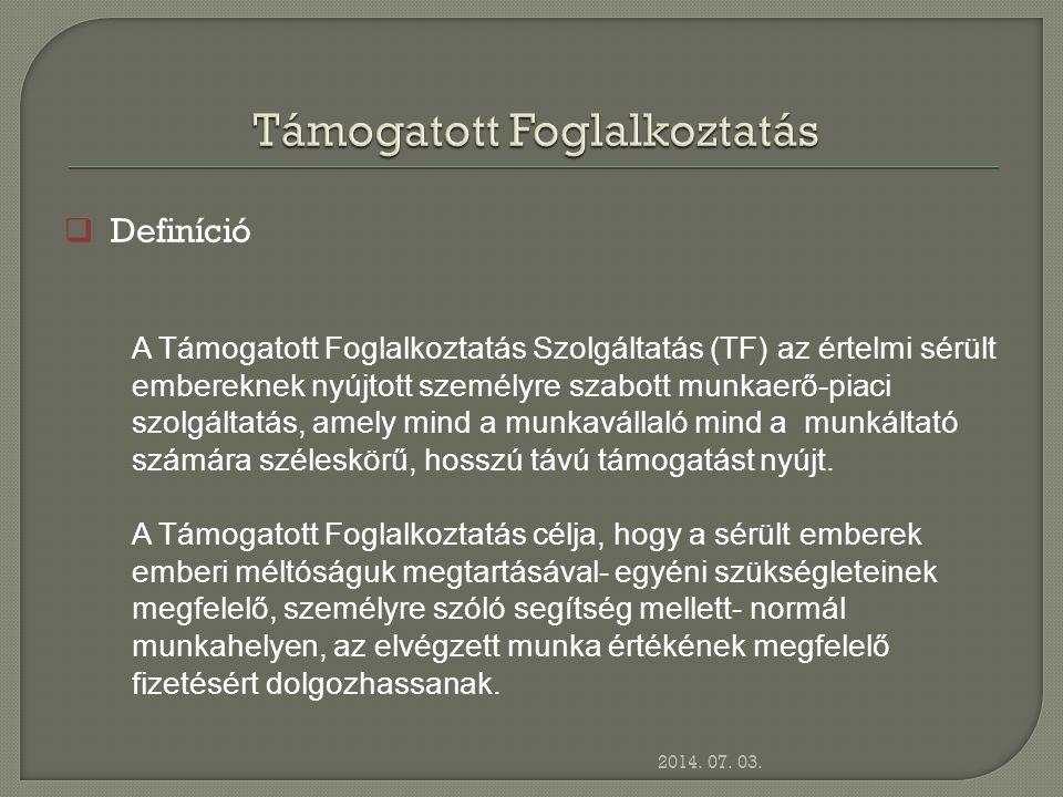 2014. 07. 03.  Definíció A Támogatott Foglalkoztatás Szolgáltatás (TF) az értelmi sérült embereknek nyújtott személyre szabott munkaerő-piaci szolgál