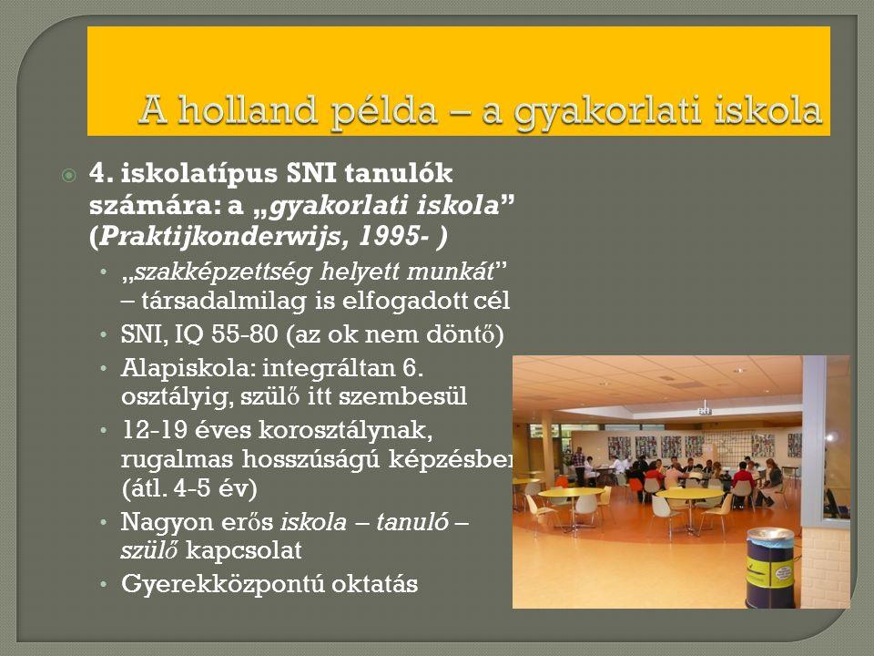 """ 4. iskolatípus SNI tanulók számára: a """"gyakorlati iskola"""" (Praktijkonderwijs, 1995- ) • """"szakképzettség helyett munkát"""" – társadalmilag is elfogadot"""