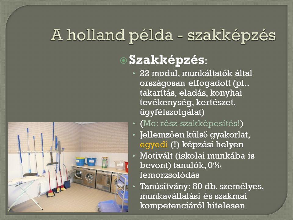  Szakképzés : • 22 modul, munkáltatók által országosan elfogadott (pl.. takarítás, eladás, konyhai tevékenység, kertészet, ügyfélszolgálat) • (Mo: ré