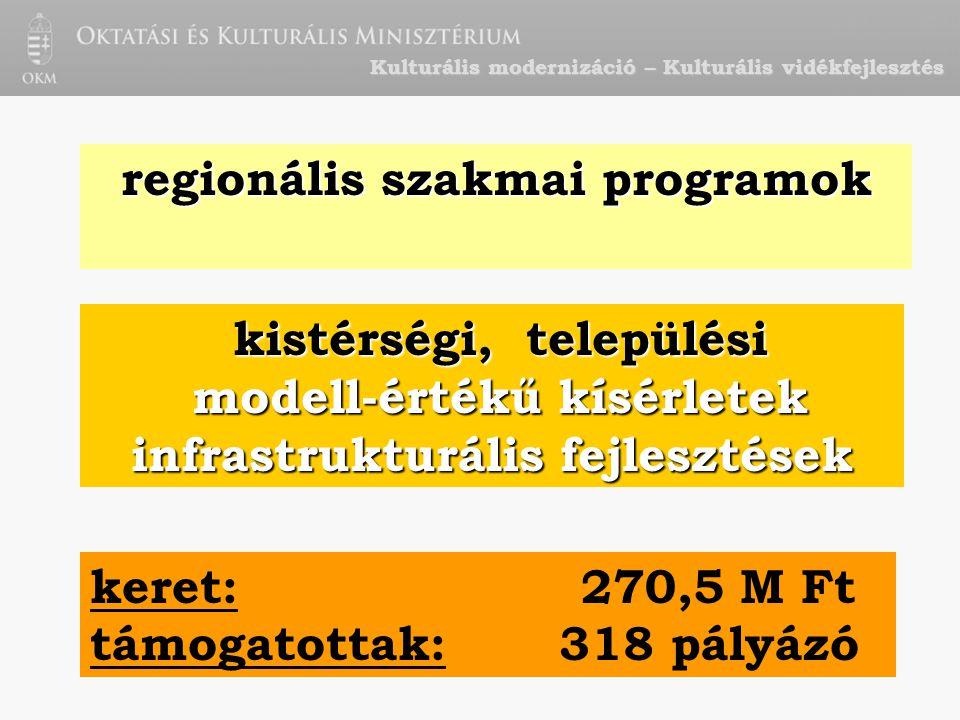 Kulturális modernizáció – Kulturális vidékfejlesztés regionális szakmai programok kistérségi, települési modell-értékű kísérletek modell-értékű kísérletek infrastrukturális fejlesztések keret: 270,5 M Ft támogatottak: 318 pályázó