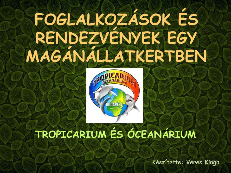 FOGLALKOZÁSOK ÉS RENDEZVÉNYEK EGY MAGÁNÁLLATKERTBEN TROPICARIUM ÉS ÓCEANÁRIUM Készítette: Veres Kinga