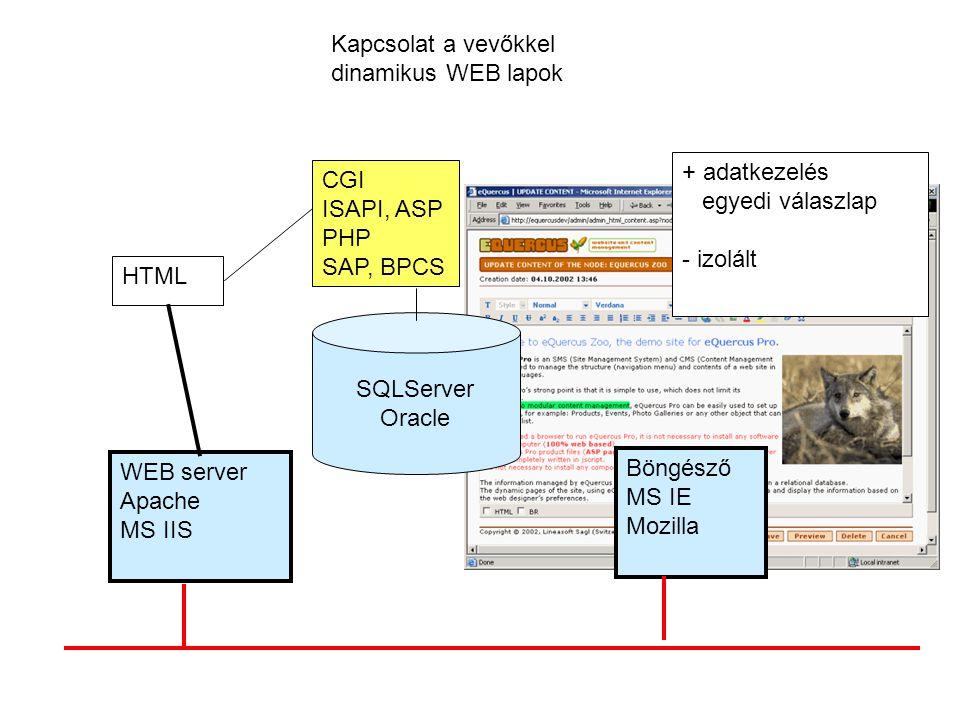 Kapcsolat a vevőkkel dinamikus WEB lapok CGI ISAPI, ASP PHP SAP, BPCS WEB server Apache MS IIS HTML Böngésző MS IE Mozilla + adatkezelés egyedi válasz