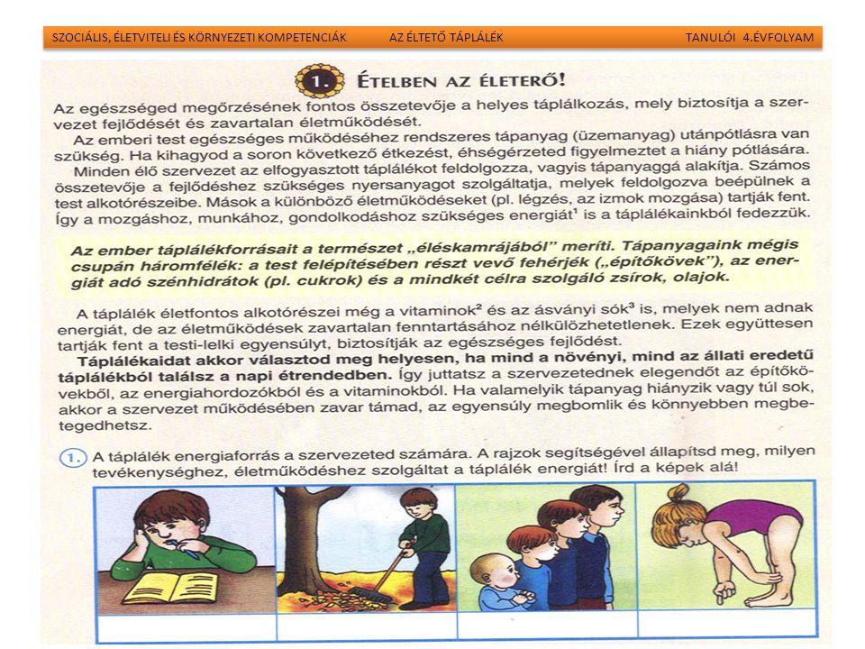 SZOCIÁLIS, ÉLETVITELI ÉS KÖRNYEZETI KOMPETENCIÁK AZ ÉLTETŐ TÁPLÁLÉK TANULÓI 4.ÉVFOLYAM 18