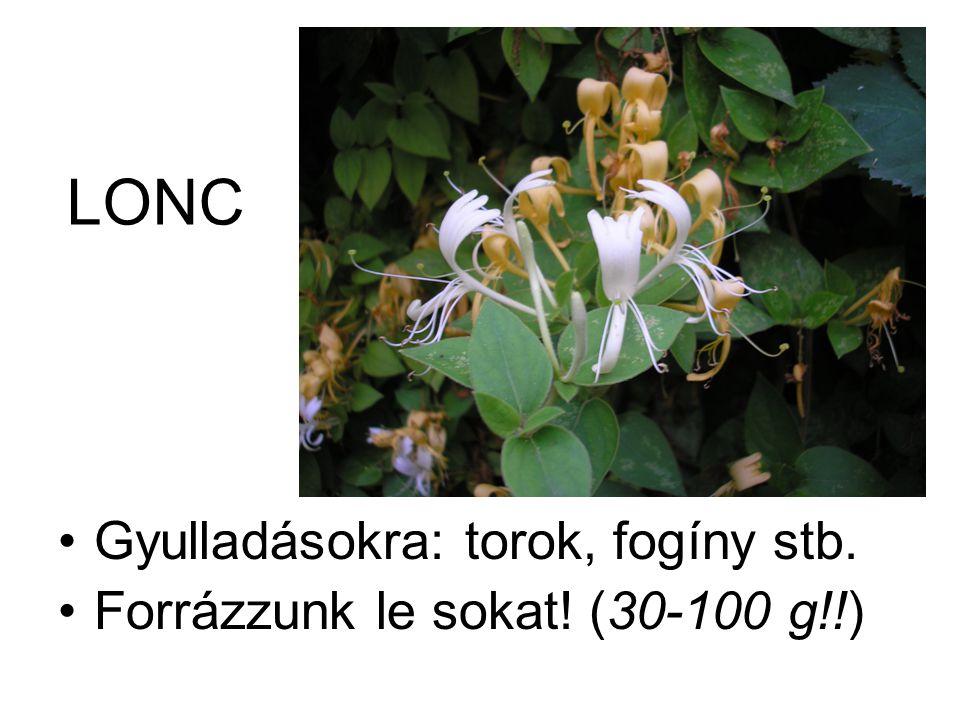 LONC •Gyulladásokra: torok, fogíny stb. •Forrázzunk le sokat! (30-100 g!!)