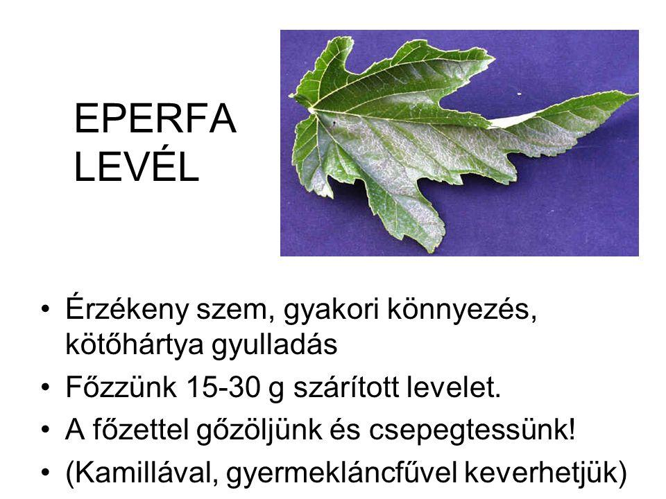 EPERFA LEVÉL •Érzékeny szem, gyakori könnyezés, kötőhártya gyulladás •Főzzünk 15-30 g szárított levelet. •A főzettel gőzöljünk és csepegtessünk! •(Kam