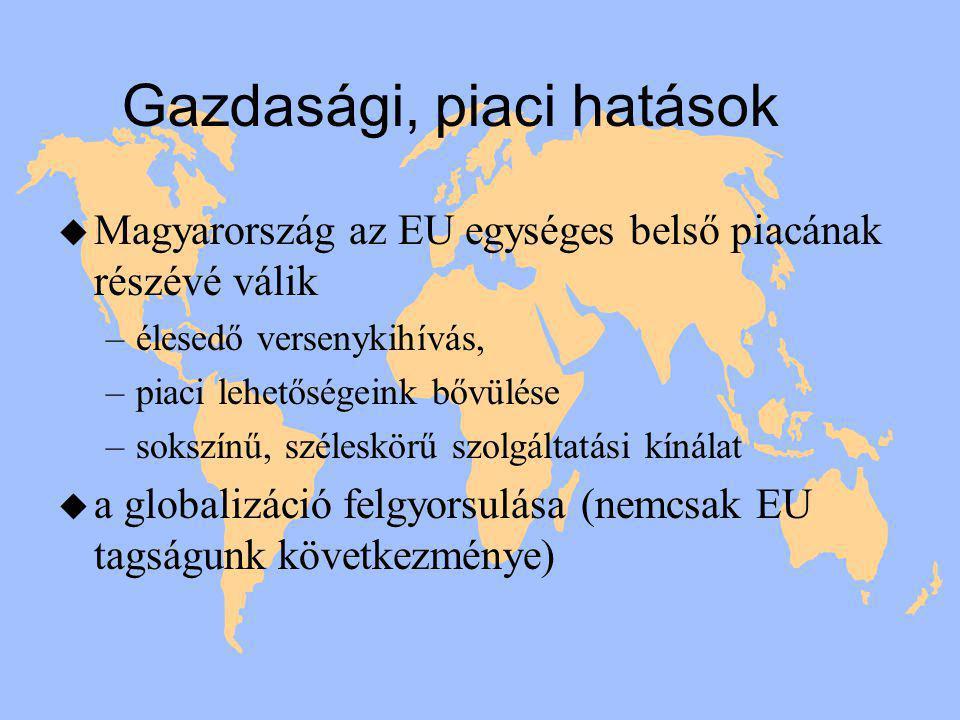 Gazdasági, piaci hatások u Magyarország az EU egységes belső piacának részévé válik –élesedő versenykihívás, –piaci lehetőségeink bővülése –sokszínű, széleskörű szolgáltatási kínálat u a globalizáció felgyorsulása (nemcsak EU tagságunk következménye)